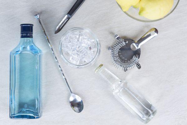 Receitas de bebidas afrodisíacas a base de gin